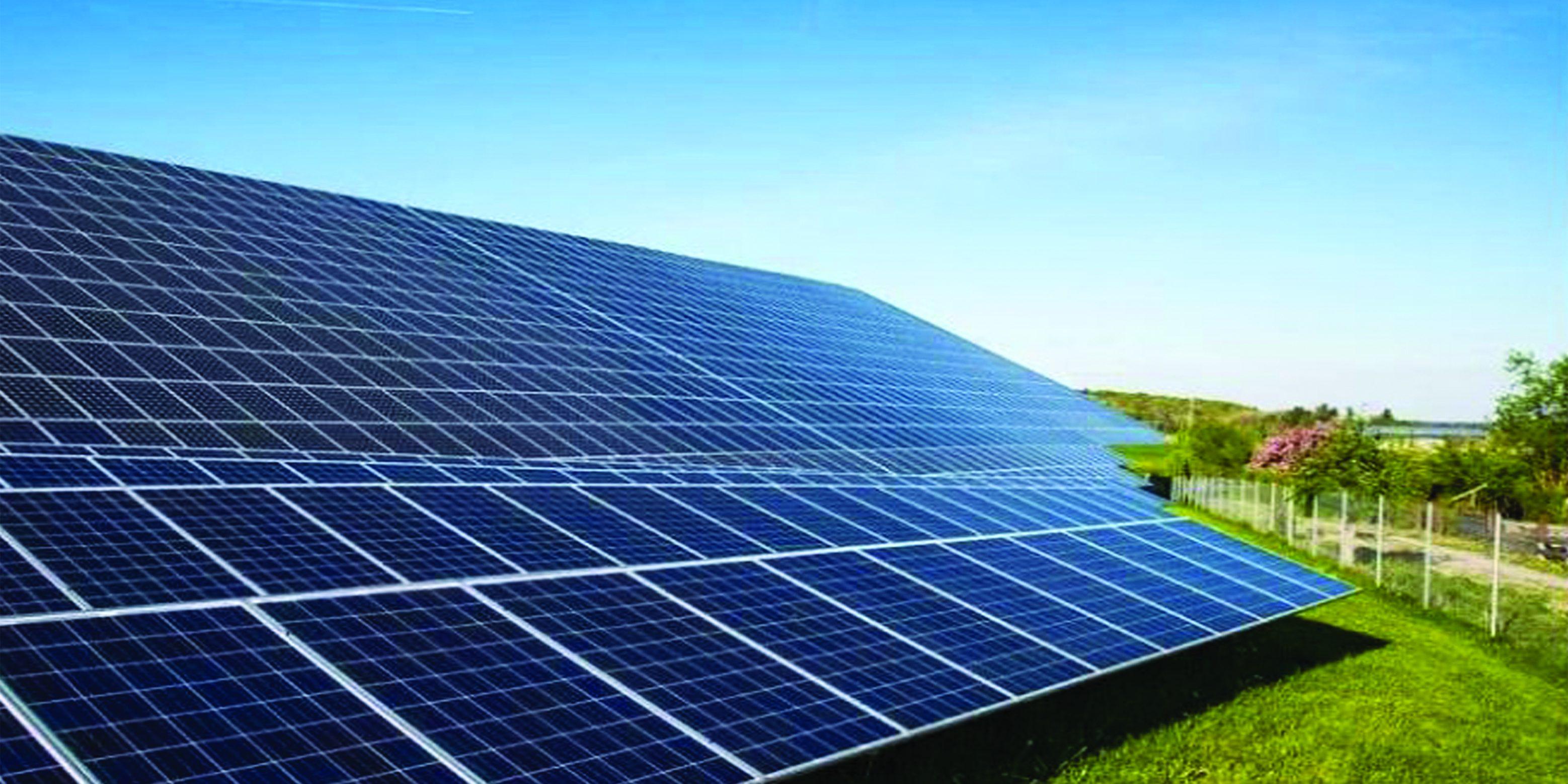 hydroseeding solar fields